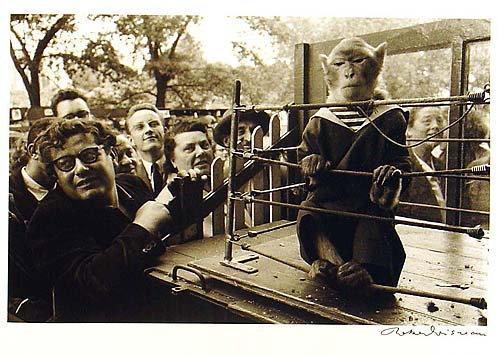 lesanimauxsuperieurs1954_thumbnail