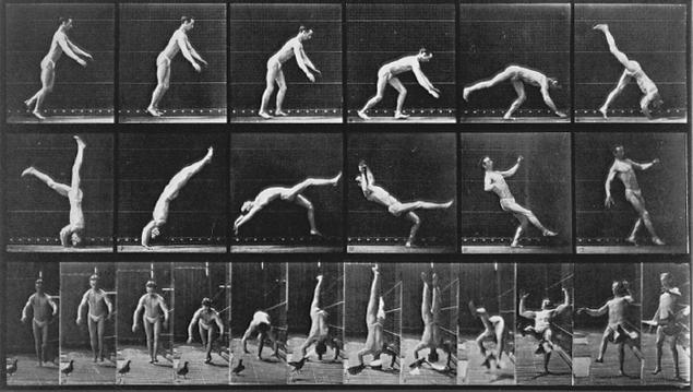 muybridge_headspring