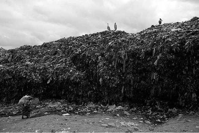 Để kiếm sống, bà Gachenga đi tìm vật liệu tái chế ở bãi rác Dandora – một trong những bãi rác lớn nhất Châu Phi.